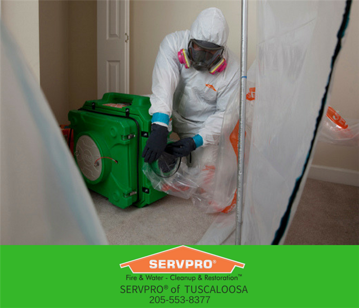 Protection in Mold Remediation