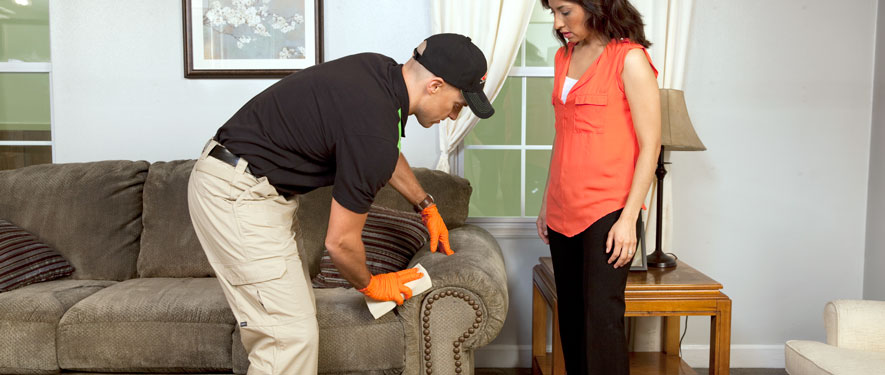Tuscaloosa, AL carpet upholstery cleaning